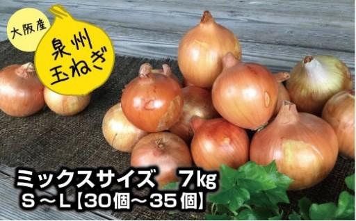 生産者オススメ!泉州玉ねぎの美味しいレシピ