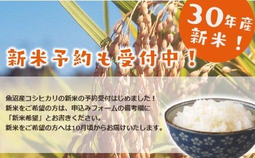いよいよ魚沼産コシヒカリ「新米」予約受付開始!