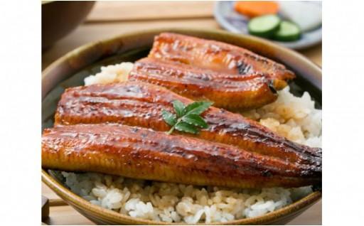 もうすぐ土用の丑の日!鹿児島県指宿市産の鰻蒲焼
