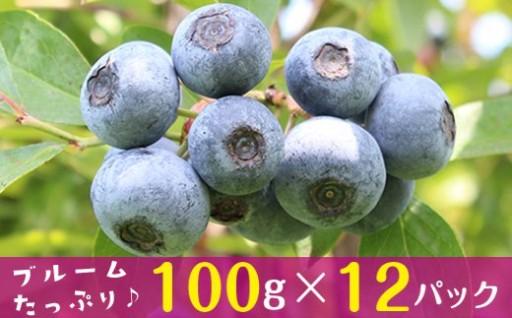 ブルームたっぷり【朝摘みブルーベリー1.2kg】
