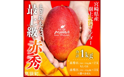 宮崎県産完熟マンゴー[赤秀]1kg