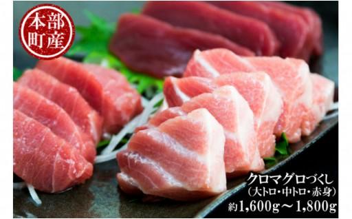 クロマグロ(大トロ・中トロ・赤身)1.6kg