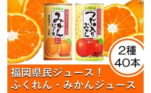 福岡県民愛飲!ふくれんのみかんジュース2種40本