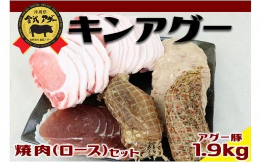 金アグー焼肉(ロース)セット アグー豚1.9kg