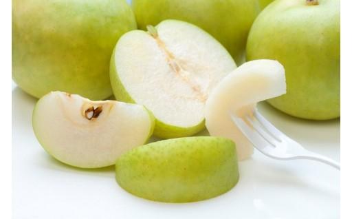 奈良の初秋を代表する梨、20世紀梨の予約を開始!