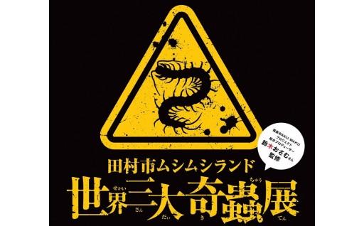夏休み自由研究は三大奇蟲&カブトムシ!