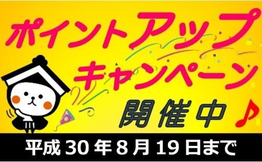 寄附1万円ごとに【2,000ポイント】プレゼント