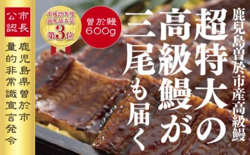 """約200gの超特大""""曽於鰻""""を3尾もお届け!!"""