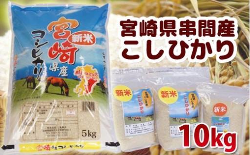 平成30年産新米!!【串間産こしひかり】10kg