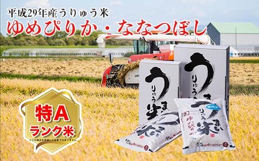 平成29年産うりゅう米ゆめぴりか・ななつぼし