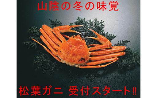 鳥取の冬の味覚の王様『松葉ガニ』受付スタート!!
