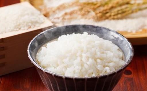 ひろゆき農園でできたおいしいお米 10Kg