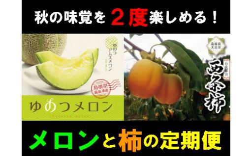 秋の味覚!メロンと柿の定期便
