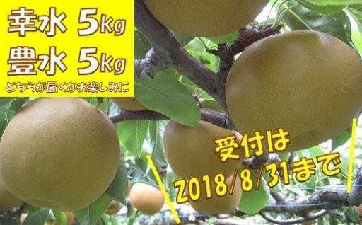 ◆ 梨5kg ◆(福島県いわき市産)