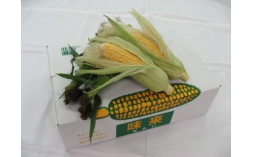 ◎収穫開始◎スイートコーン「味来」32本セット