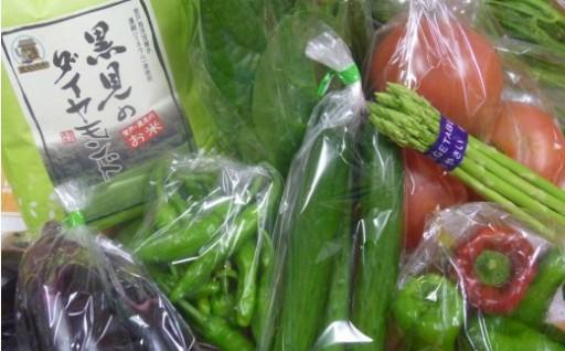 ダイヤモンド米(新米)と新鮮野菜8品セットです!
