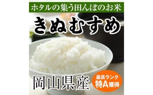 新商品追加しました!特A評価の無洗米の定期便!
