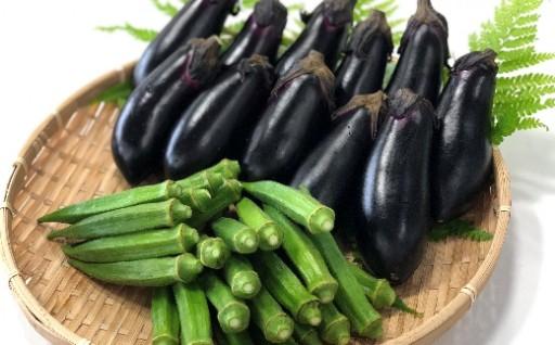 平岡農園夏の野菜セット 受付終了間近です!!