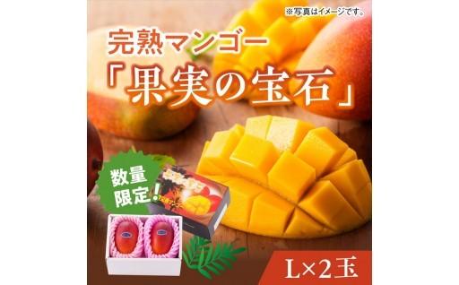 冬に食べる「生マンゴー」はいかがですか!