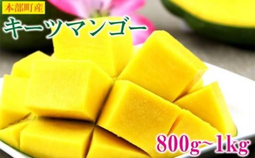 沖縄県本部町産キーツマンゴー<800g~1kg>