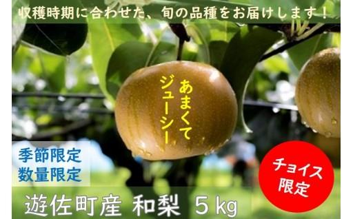 【NEW】遊佐町産和梨5kg
