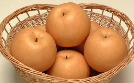 朝倉市の梨30種類 8月中旬より出荷が始まります