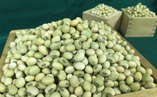 豆といえば北海道の音更町!
