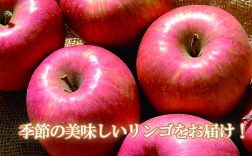 りんごの受付始まってまーす!