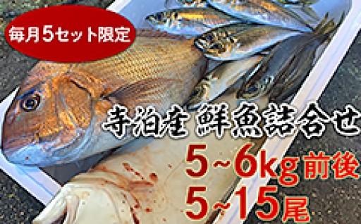 毎月5セット限定!鮮魚5~6kg詰合せ♪