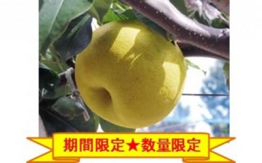 今年も幻の梨「かほり梨」登場!
