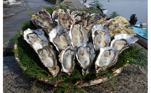 能登穴水産の牡蠣