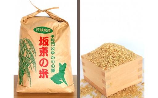 平成30年産 坂東産 コシヒカリ10kg(玄米)