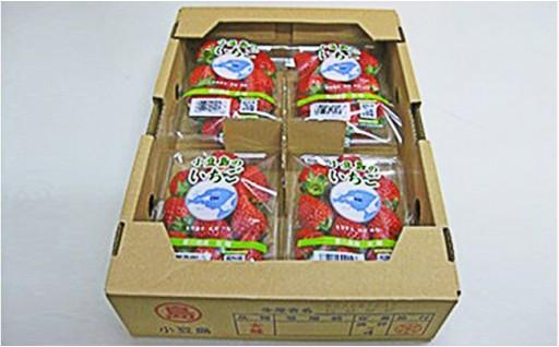 新商品追加!小豆島のいちご(女峰)1kg