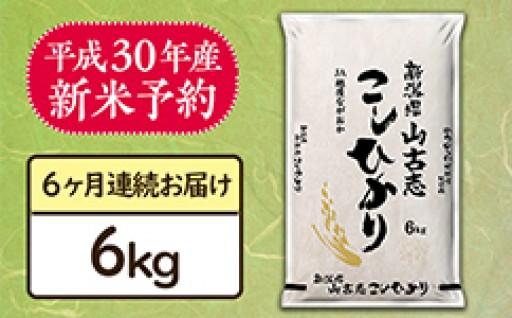 産地直送!山古志&栃尾産コシヒカリ新米予約開始!