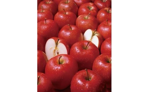 甘み広がるジューシーなリンゴ 5kg