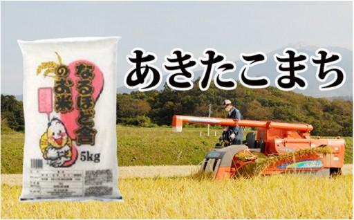 5kg×2袋 秋田米のエース、あきたこまち