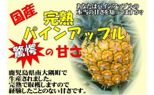 新登録!!【限定30】甘~いパインアップル