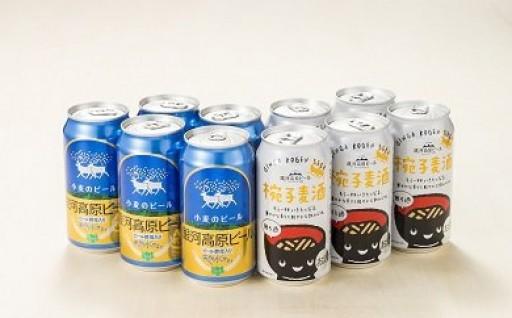 人気!銀河高原ビール10缶詰め合わせ 再入荷!
