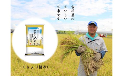 食欲の秋はやっぱりお米。