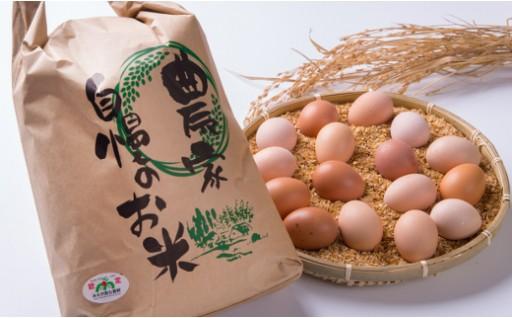 実りの秋! 紀北町産のお米の受付を開始しました。