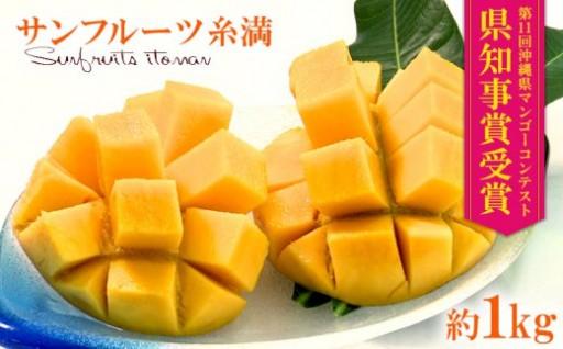 沖縄県知事賞受賞サンフルーツ糸満マンゴー約1kg