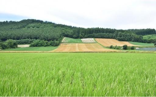 【味覚の秋】なかふらの町の美味しい新米!農産物!