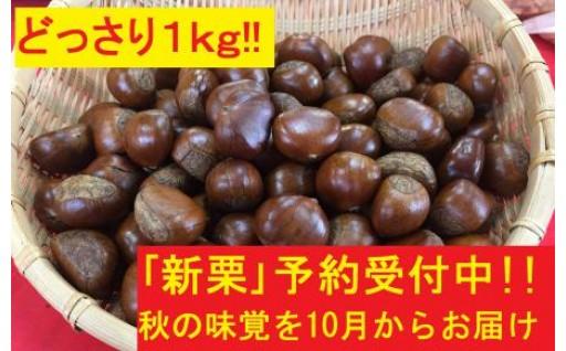 【新栗】予約受付は9月まで!「天津甘栗」1kg