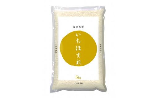 【残りわずか】福井県産いちほまれ 5kg