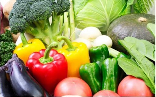 北海道胆振の伊達市から新鮮な伊達野菜!