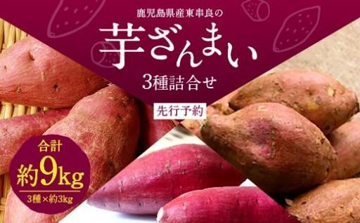 【先行予約】鹿児島県産東串良の芋3種詰合せ