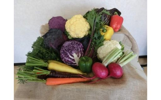 彩り野菜と【30年産】お米のセット