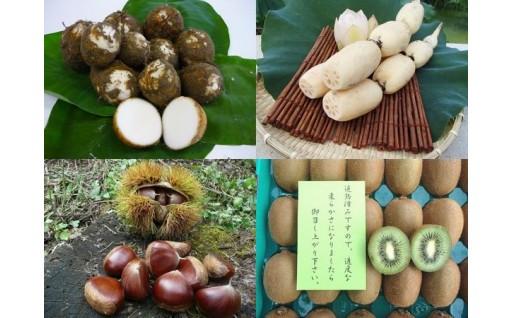 「季節限定の五泉の特産品」申し込み受付中!!