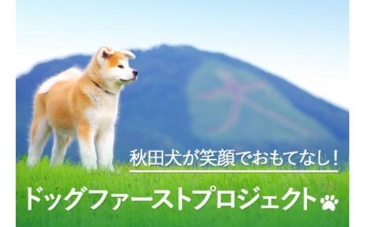 秋田犬がおもてなし!ドッグファーストプロジェクト