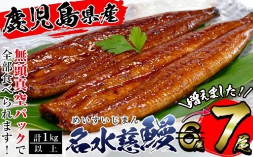 味覚の秋!鹿児島県産名水慈鰻☆一尾増量☆7尾